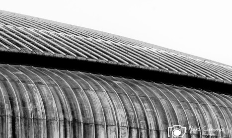 AuditoriumMusica-RenzoPiano-8.jpg