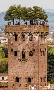 Lucca-26.jpg