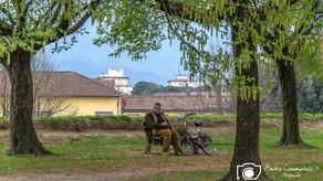 Lucca-6.jpg