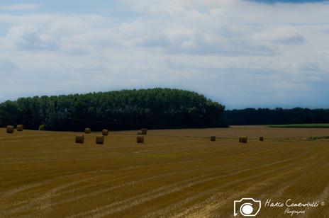 Francia-26.jpg