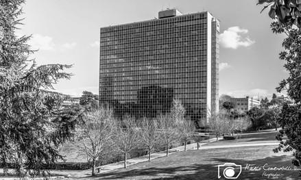 Torre-ENI-2.jpg