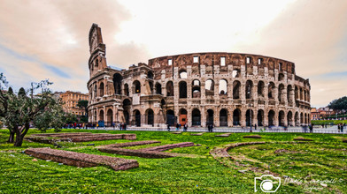 Roma-7.jpg