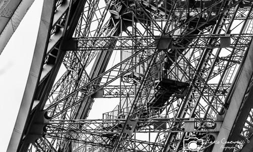 Eiffel tower 6