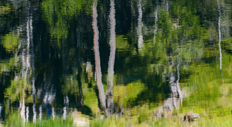 Painting-1.jpg