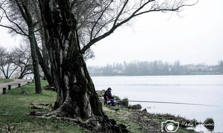 Mantova-36.jpg