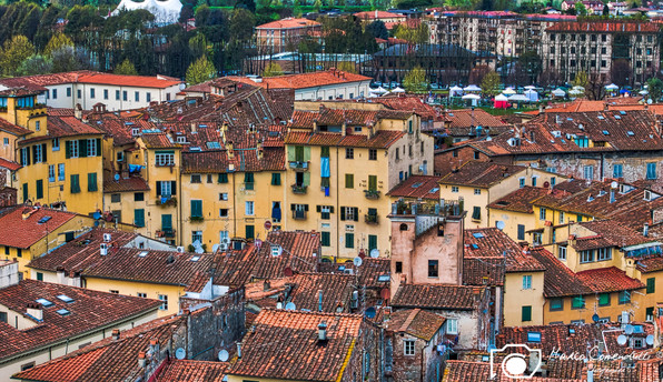 Lucca-11.jpg