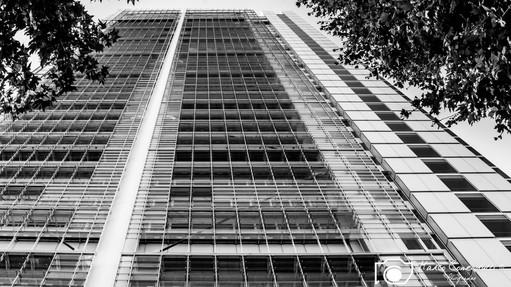Grattacielo-SanPaolo-6.jpg
