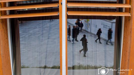 unusual-reflextions-5.jpg