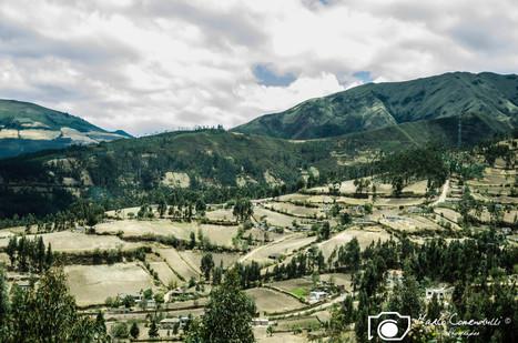 Ecuador-4.jpg