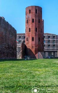 Torino-19.jpg