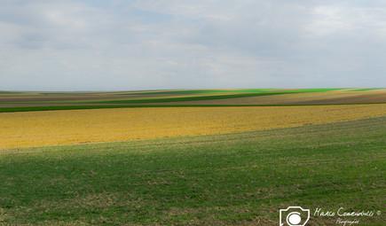 Francia-47.jpg