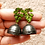 Thumbnail: Enchanting Wilderness, Polymer earrings with Quilled jhumka