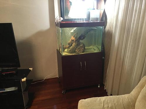 80 cm Su Kaplumbağası Akvaryumları Tekerlekli