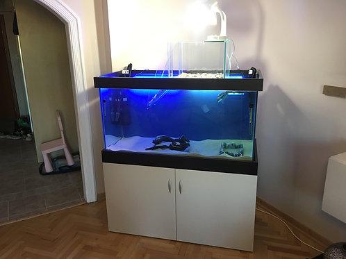 120 cm Su Kaplumbağası Akvaryumları