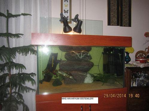 100 cm Kaplumbağa Bahçesi Kuru Alan Kayalı