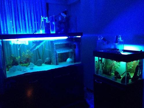 150 cm Su Kaplumbağası Akvaryumları