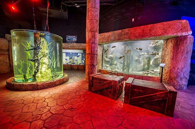 malta aquariummr3.jpg