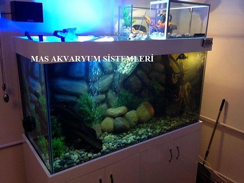 130 cm Su Kaplumbağası Akvaryumları