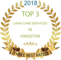 2018%20Top%203%20Lawn%20Care%20Services%