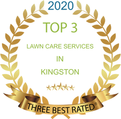 2020%20Top%203%20Lawn%20Care%20Services%