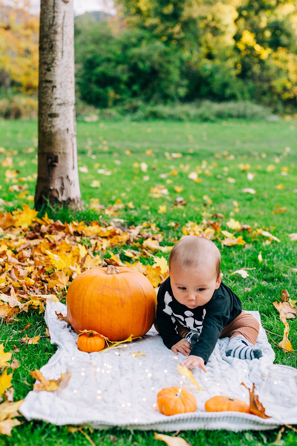 Baby sitting on blanket with pumpkins and fairy lights in autumnal Heaton Park, Newcastle