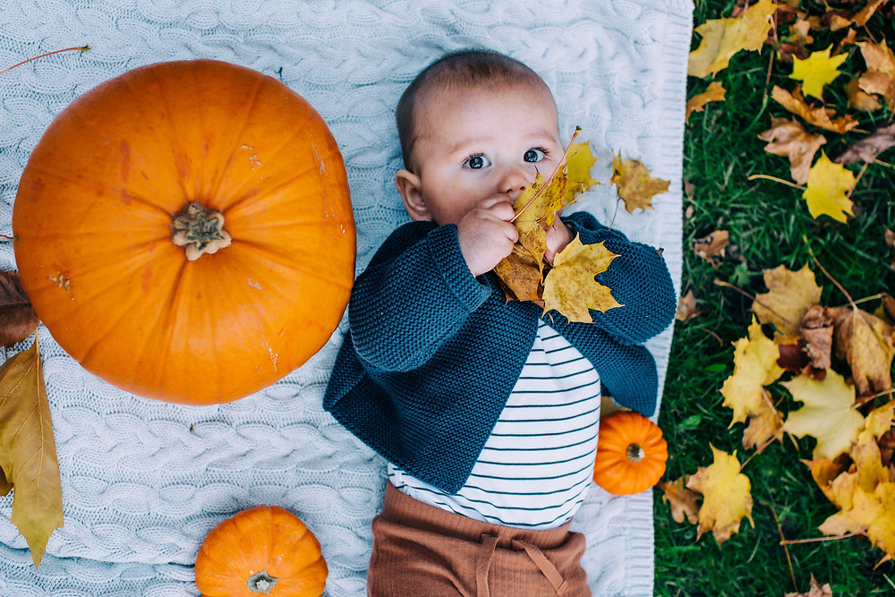 Baby playing with leaves, lying on blanket with pumpkins in autumnal Heaton Park, Newcastle