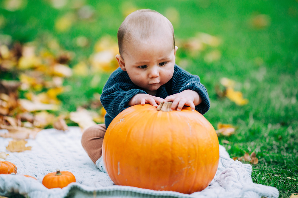 baby playing with pumpkin while sitting on blanket in autumnal Heaton Park, Newcastle