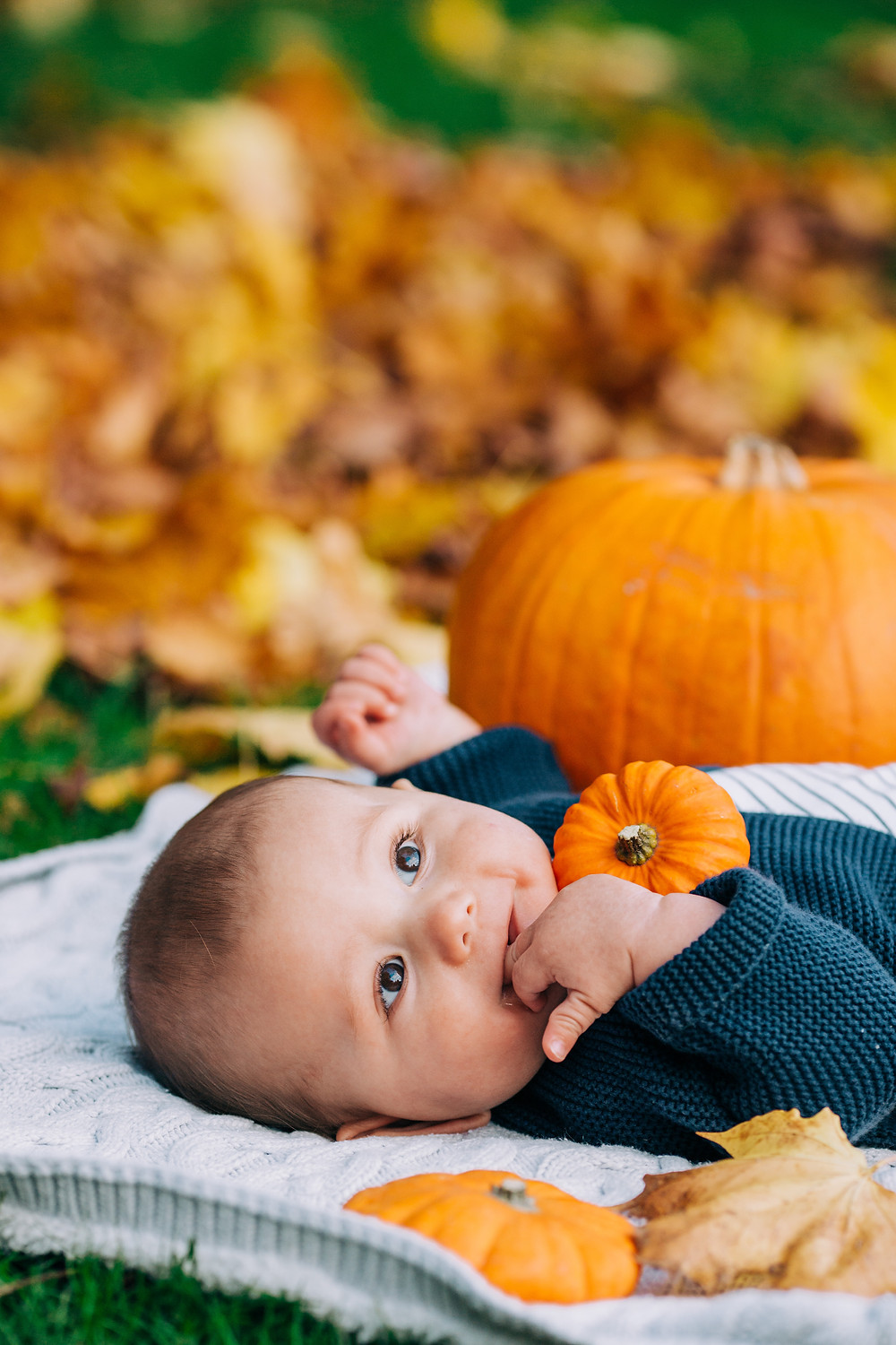 Sweet smiling baby lying on blanket, surrounded by pumpkins and autumn leaves in Heaton Park, Newcastle
