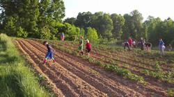 God's Garden Work 2014