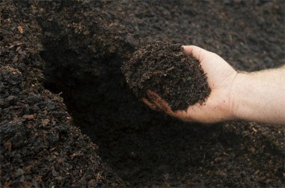 Использование сельскохозяйственных катков, катки полевые, каток рубящий, пожнивные остатки