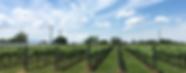 takahata-winery.png