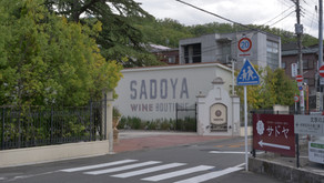 Sadoya Winery Tour: Amazing accessibility, long history, stunning interiors