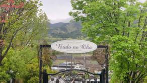 Budounooka Yamanashi: Japanese Wine Lover's Heaven