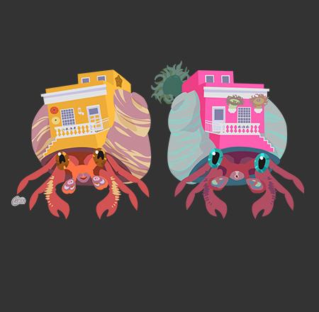 BoKaap Hermit Crabs