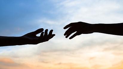 Human hands.jpg