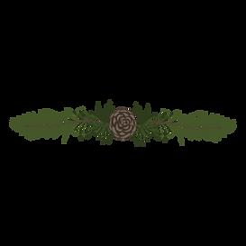 Rami di pino Abete 5