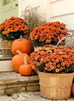 Stage Your Home For The Fall Season!