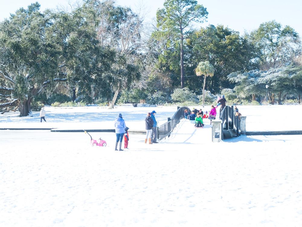 snow sledding Hampton Park
