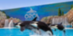 VC_SeaWorldSanDiego_Supplied_SW5_0771_Fi