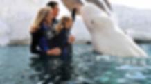 VC_SeaWorldSanDiego_SpecialExperiences_S