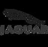 jaguar-cinza.png