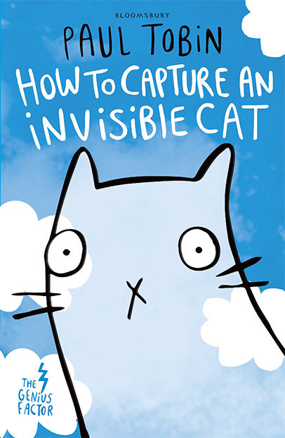 How to Capture and Invisible Cat