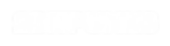 2BITPUNKS VIDEOGAME PRODUCER LOGO WHITE