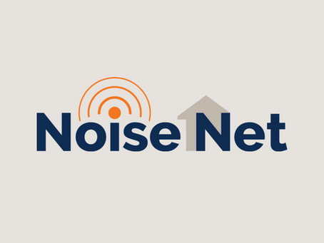 The history of NoiseNet