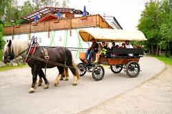 Kutschenfahrt im schönen Ort Grafenwiesen