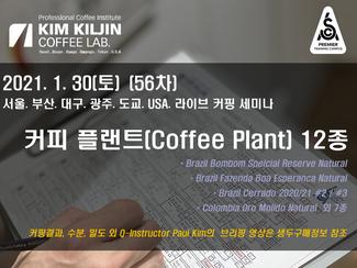 2021. 1 Coffee Plant 12종 생두 정보 업데이트 (56차)공동구매 가능