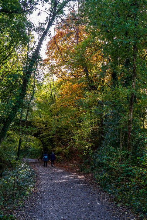 Parke Cycle Path