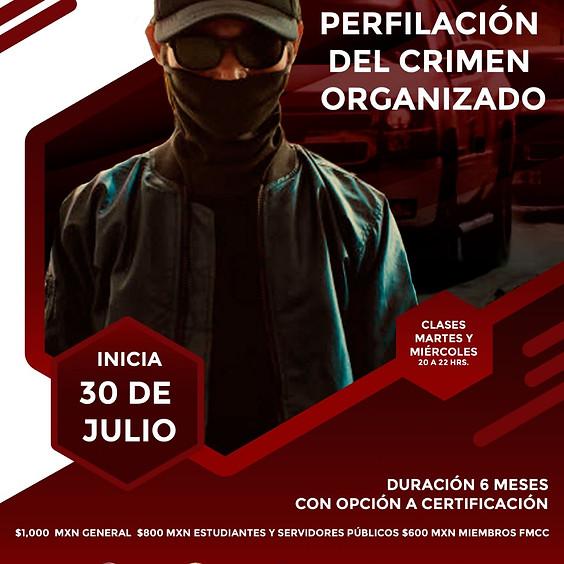 Diplomado Online: Perfilación del crimen organizado