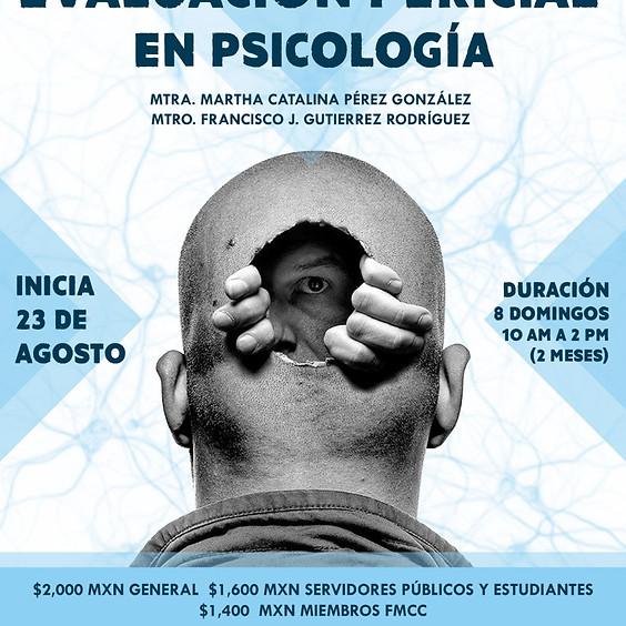 """Curso online de actualización """"Evaluación pericial en psicología"""""""