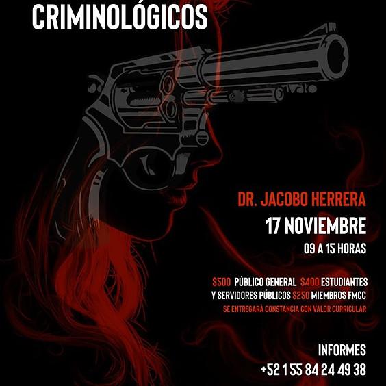 Elaboración de perfiles criminológicos